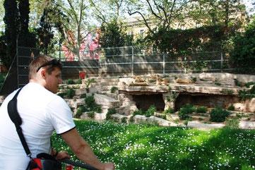 Львы в Барселоне. Истории старой Барселоны. Гиды в Барселоне, экскурсии в Барселоне