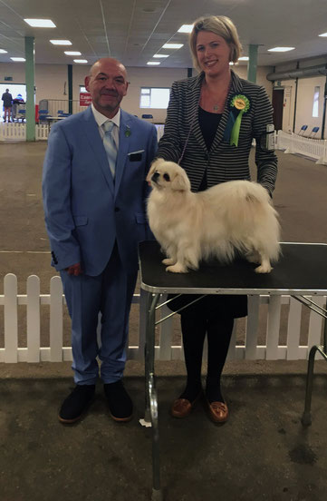 Judge Daniel Roberts, Nova✩ with owner Claire Cooper