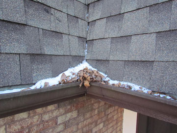 Got a call late in the season to clean these gutters