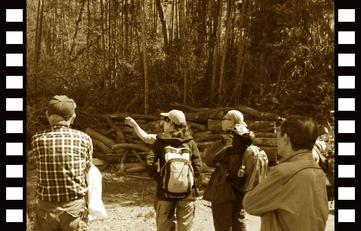 あなたのオリジナルの間伐映像で日本を森を元気にしよう!