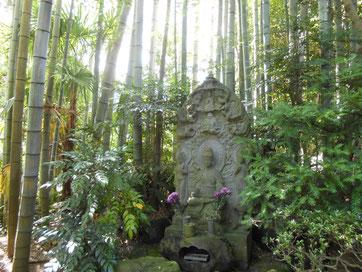 休耕庵、塔頭跡地の竹林