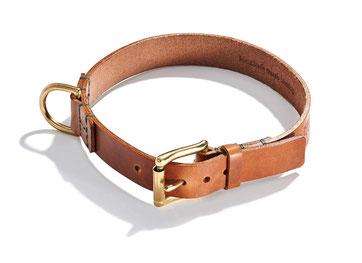 Dünnes braunes Hundehalsband aus Leder mit goldener Schließe aus Messing