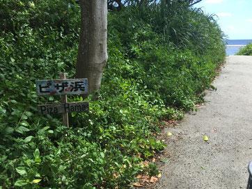 久高島 ピザ浜