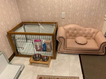 愛犬と楽しむ スイートルーム 専用ゲージ・ソファ