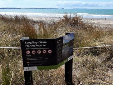 - Long bay Okura - Région d'Auckland - Nouvelle-Zélande