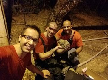 Equipe Cb Alcides, Sd Zacante e Sd Klinger resgatou filhote de coruja após apagarem incêndio em Pirituba (Mai/2018)