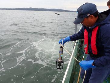 メモリー式水質計による海洋観測