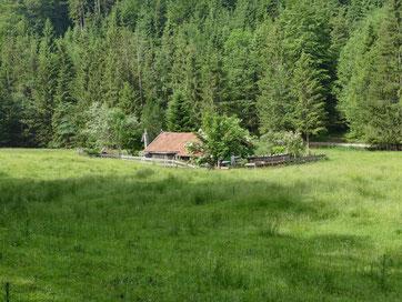 Bergmesse bei der Wagner Alm auf´m Samerberg