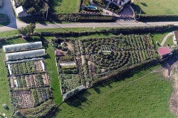 Jardin mandala cultivé en permaculture