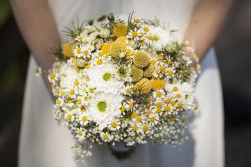 Bildreportagen zur Hochzeit