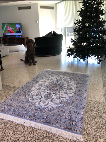 ESFAHAN TAGHIZADEH工房 こちらはフィールドSILKの高級感いっぱいの絨毯です。