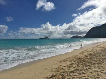 ハワイ 日本語ガイド付き貸切チャーター オアフ タクシー観光 ワイマナロビーチのブランコ 貸切タクシーツアー