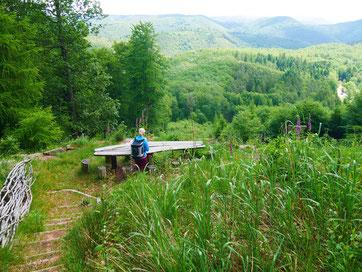 """""""Hoch"""" oben auf dem Eiderberg mit phantastischen Ausblicken"""