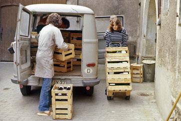 Beladen des Transporters. Alle packen mit an. (1975)