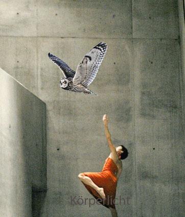 Freies Tanzen in Bern, Sarah Urscheler