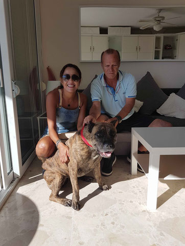 Xéna, une splendide Dogue des Canaries, impressionnante mais très câline ! Avec Christian et Siha du Maroc. Sept 2018