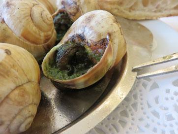 """Escargots de la maison """"Valentin"""" en Seine-et-Marne"""