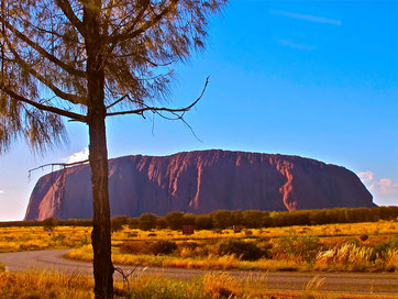 Rad: AUSTRALIEN: Uluru - Ayers Rock - vor dem Sonnenaufgang