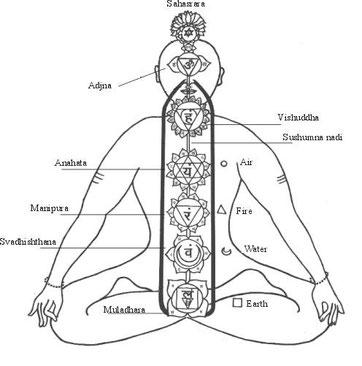 Les sept chakras.
