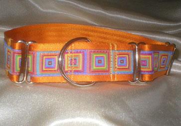 Halsband, Hund, Martingale 4cm, goldorange mit Sommerborte