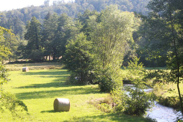 Im Albtal zwischen Fischweier und Marxzell (G. Franke, 02.08.15)