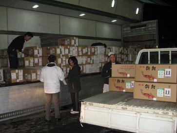 Bild: Koi-Shipment-Ojiya