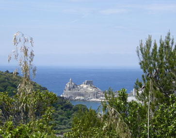 Vista su Portovenere dall' isola Palmaria