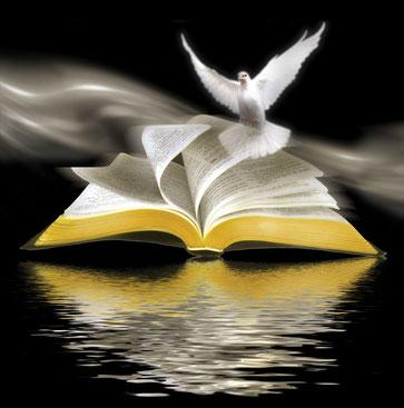 Disfruta de la palabra de Dios  y deléitate con sus enseñanzas