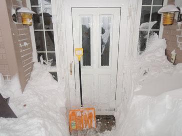 ドア右側には薪が積んであるのですが・・