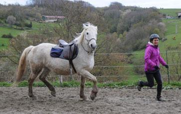 Equitation ethologique