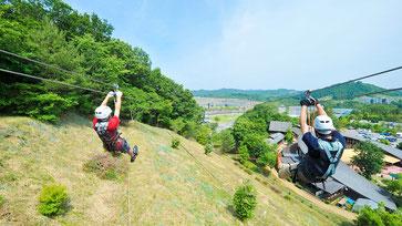 ツインリンクもてぎ 栃木県芳賀郡茂木町 レース