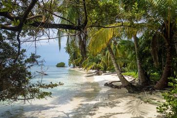 4 - Karibik