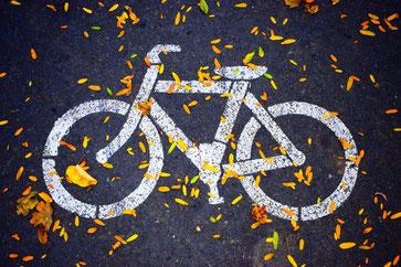Le vélo est le moyen de transport le plus économique