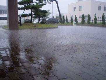 どしゃぶりの雨。おかげさまで『うみまち通信』も今日で満1歳。