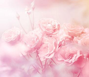 三重県 M様:ピンクのお花の画像