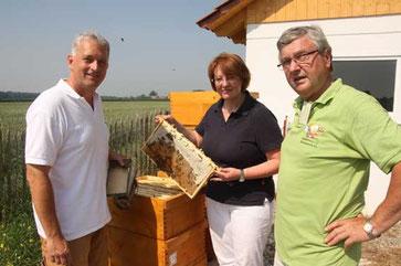 Das Bild zeigt Daniel Schwenzel aus Ebermergen, Brigitte Weber aus Donauwörth/Berg und Alfred Hofmann (1. Vorstand) am vereinseigenen Bienenstand.