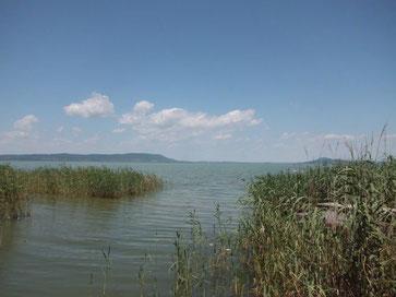 Seezugang Plattensee in Balatonmariafürdö
