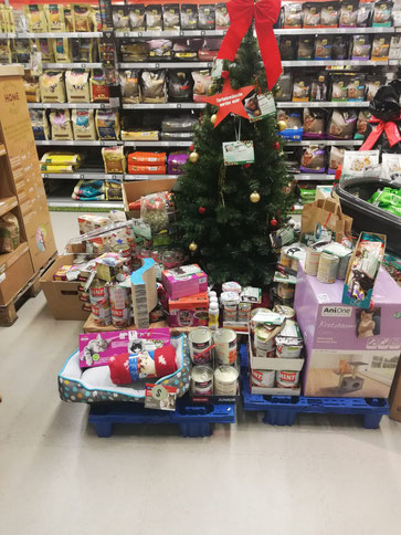 Hier der Weihnachtsbaum mit den Geschenken für unsere Schützlinge und viele herrenlose Katzen vom Fressnapf in Mögeldorf.