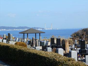 三浦霊園,海が見える