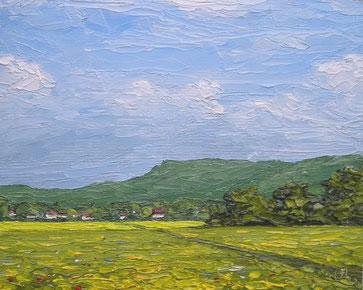Felder und Wiesen bei Zell u.A.(Öl auf Leinwand, 12 x 15 cm, verkauft)