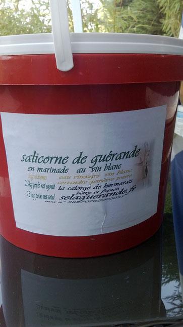 salicorne pot de 2.5kg