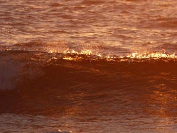 ゆうひ色の波・・
