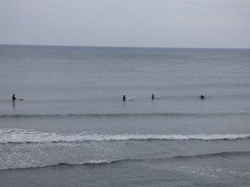 パドルトレーニングと思って、小波でもしっかり乗れていましたよ~(^_^)/