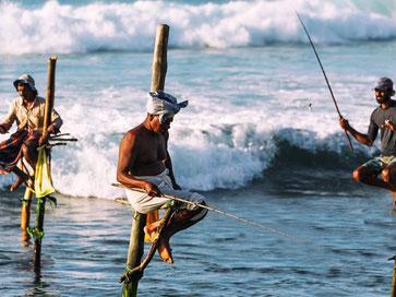 Paalvissers langs de zuidwestkust van Sri Lanka