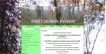 Blog Oloron-Passion