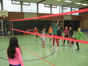 Mit Körpereinsatz dabei: Die jungen Volleyballerinnen und Volleyballer setzten sich voll ein
