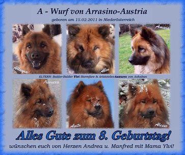 HAPPY BIRTHDAY für unsere lieben A-Bärchen von Arrasino-Austria!