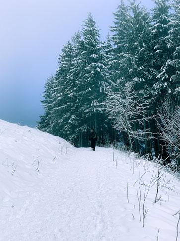 Schnee Wanderung Bäume