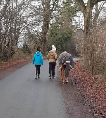 Derzeit gehen wir sehr viel spazieren.