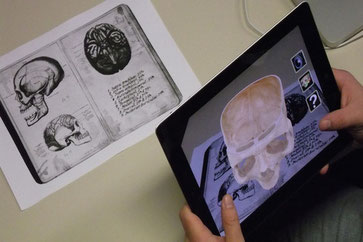 Augmented Reality Skull